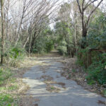 Path at Fuchu