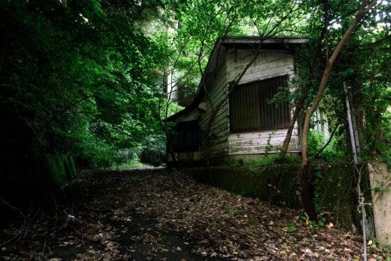 abandoned, asia, chiba, haikyo, japan, japanese, kanto, ruin, urban exploration, urbex