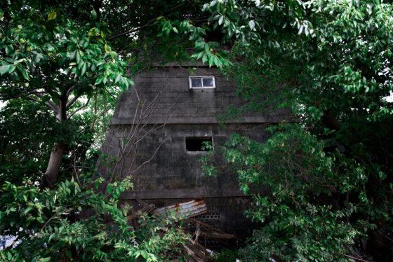 abandoned, aichi, asia, chubu, haikyo, house, japan, japanese, nagoya, ruin, urban exploration, urbex